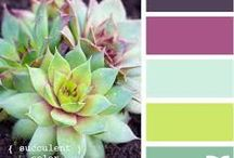 Väriyhdistelmät