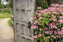 Through the Garden Gate / We'd love to have these gates in our garden! www.meadowsfarms.com