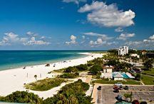 All about Sarasota, FL