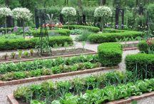 Kitchen gardens