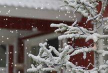 Winter Season / by Angel Jackets