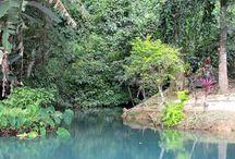 Sud du Laos / Découvrez la partie Sud du Laos, de Paksé jusqu'au plateau des Bolovens et terminez avec la région des 4000 iles. Un voyage complet pour découvrir la région www.azygo.com | Mon prochain voyage