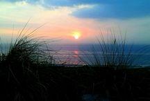 strand /                Foto's van de Hollandse kust