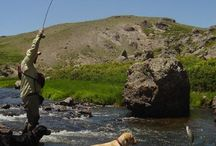 New Mexico Flyfishing