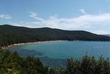 Cala Violina / Cala Violina in Toscana. The beach of Cala Violina in Tuscany