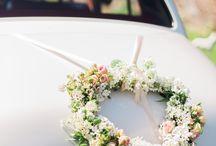 weddingcars/ Hochzeitsauto
