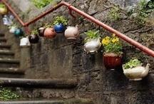 my tea pots