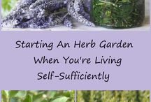Self sufficient living