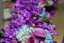 Florals / by Jennifer Drew