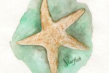 Fra havet / Bilder med assosiasjon til havet