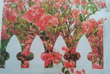 Flowers: garden