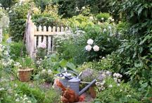 My Country Garden / Another passion!
