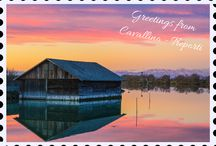 Postcards from Cavallino - Treporti / Why don't you send a digital postcard to your friends?