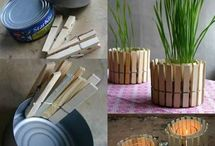 Mollette legno