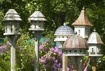 Birdhouses/ Feeders / by Dodie Dee