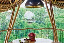 case din bambus