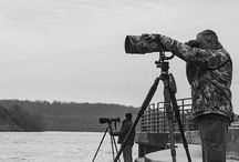 Photographing The Bald Eagles at Conowingo Dam
