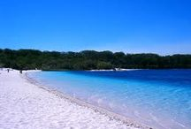 Big 5 of Fraser Island