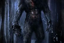 vlkodlak