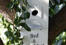 Birdhouses / Birdcages