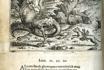 Renaissance book design