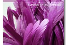 Radiant orchid / by Erika W Simpson