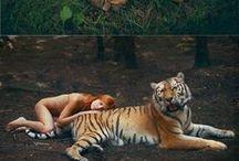 fotograflar hayvan ve kadin
