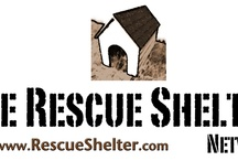 Animal Rescue / Animal rescue-related stuff