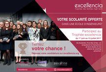 Trophée excellencia 2017 / Découvrez toutes les actualités de l'édition 2017 du Trophée excellencia !