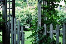 ploty do zahrady