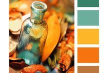 couleurs choix