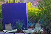 Vivid Purple & Blue Patio / by Kristian Gallagher