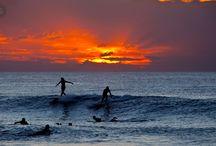 Surfing... / ¿Nos damos un bañito?