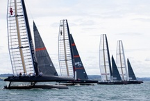 America's Cup / by megumi