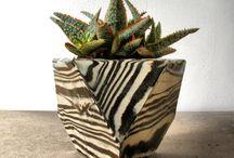 Paterak's Garden center Gift ideas / by Connie Capson