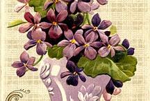 fleurs : violettes, modestes et si parfumées... / cette petite fleur discrète sous toutes ses formes : photos, cartes anciennes, point de croix etc...