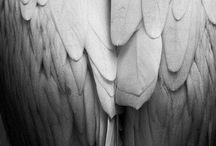 Spiritual / by Sheryl Mcfarlin