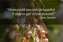 Tree Quotes / by Trees Group