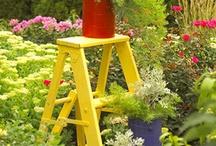 Gardening and the Yard Ideas / by ::::::Beth Sumerlin O'Briant::::::