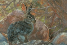 Paintings by Susan Fox. SAA (all rights reserved)