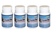 maximus 300 male enhancement