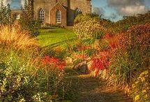 dreaming of shetland