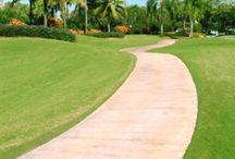 Palm Beach Gardens Florida / Events and places around Palm Beach Gardens.