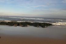 -THE BEACH-