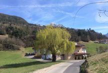 Bolzano e dintorni. / Luoghi in Alto Adige.