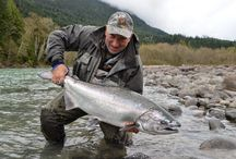 Salmon and Trout Fishing on the Lillooet River / by Great River Fishing Adventures