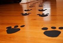 Puppy Paw-ty