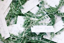 Wedding Favors / Memorable gifts to give your wedding guests