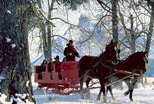 Christmas  / by Linda Sheets Bentley
