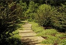 Garden Walkways and Paths